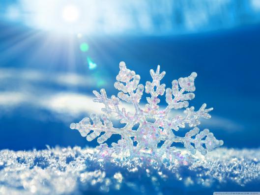Winter 2018 - Wussten sie schon